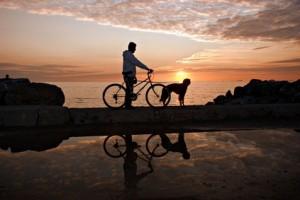 Urlaub mit Hund - auch eine mehrtägige Radtour ist bei genauer Planung möglich.