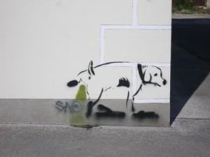 Markieren überall und immer - das muss der Hundebesitzer nicht hinnehmen, Hundeerziehung kann helfen.
