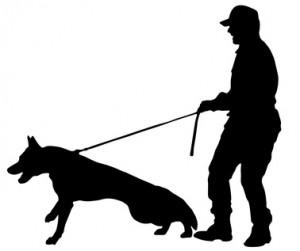 Hundeerziehung ist gar nicht so einfach.