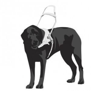 Blindenhunde haben eine jahrelange Hundeausbildung und Hundeerziehung genossen.